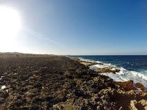 Aruba - Rocky Coastline Royaltyfria Bilder