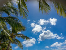 Aruba Sky Royalty Free Stock Images