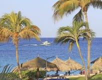 Aruba sur la mer des Caraïbes Photo stock