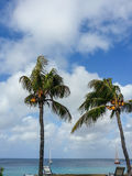 Aruba Royalty Free Stock Photo