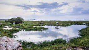 Arugam海湾盐水湖风景,斯里兰卡 免版税图库摄影