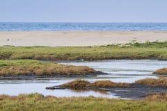 Arugam bay lagoon landscape, Sri Lanka Stock Photo