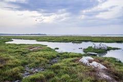 Arugam bay lagoon landscape, Sri Lanka Royalty Free Stock Photos