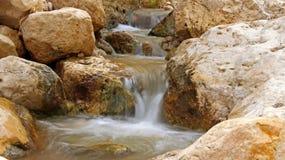 Arugot wadi Arkivfoton