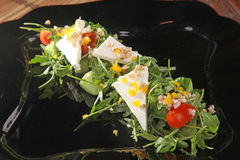 Arugula και τυρί στο μαύρο πιάτο Στοκ εικόνα με δικαίωμα ελεύθερης χρήσης