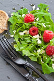 Arugula με φέτα και τα σμέουρα Στοκ εικόνα με δικαίωμα ελεύθερης χρήσης