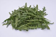 Arugula σε ένα άσπρο πιάτο, υγιής σαλάτα Στοκ εικόνα με δικαίωμα ελεύθερης χρήσης