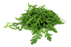 Arugula Royalty Free Stock Photos