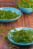 Arugula in a blue bowl Royalty Free Stock Photography
