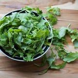 Arugula frais prêt pour une salade d'été Images stock