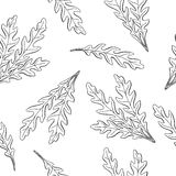 Arugula graphic black white sketch seamless pattern illustration Stock Photo