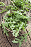 Arugula  herb. Stock Photo