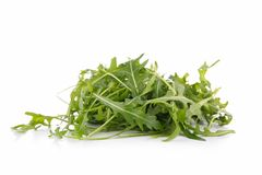 Arugula isolated Stock Image