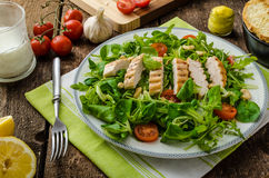 Arugula and lamb's lettuce with grilled chiken Royalty Free Stock Photography