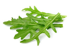 Arugula leaves Royalty Free Stock Images