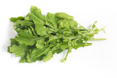 Arugula Leaves. Rucula. Over a white background royalty free stock photography