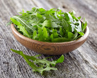 Arugula leaves Stock Photos