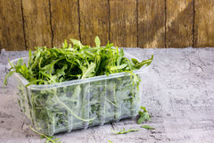 Arugula in a plastic container Stock Photography