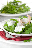 Arugula with prawn and remoulade Royalty Free Stock Photo