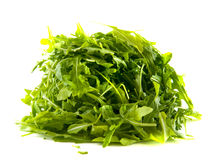 Arugula or rocket leaves Stock Photography