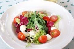 Arugula salad. Stock Photo
