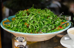 Arugula salad Stock Images