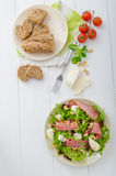 Arugula salad with meat and mozzarella Stock Photography