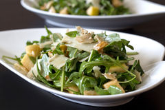 Arugula salad. With parmesan and nut stock photo