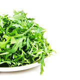 Arugula salad on a plate isolated on white Royalty Free Stock Photos