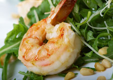 Arugula salad with prawn. On plate closeup stock image