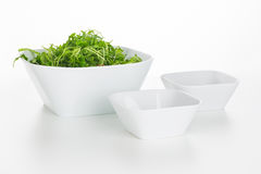 Arugula salad in square bowls isolated stock photography