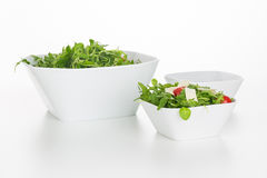 Arugula salad in square bowls isolated Stock Images