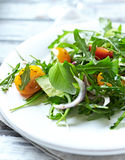 Arugula salad with tomatoes and cucumber Stock Photography