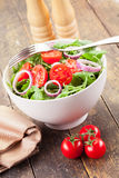 Arugula Salad with tomatoes and onion rings Stock Images