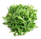 Arugula salad  . Royalty Free Stock Image