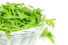 Arugula salad in a wicker basket Stock Image
