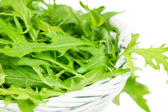 Arugula salad in a wicker basket Stock Photography