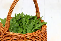 Arugula. A wicker basket with a handle full of fresh arugula over wooden background royalty free stock images