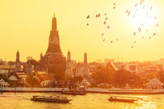 Arun Wat с летящими птицами в заходе солнца на Бангкоке, Таиланде Стоковое Изображение