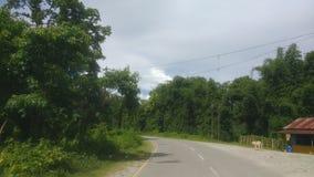 Arunachal 库存照片