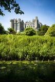 Arundel slott i frodig grön omgivning på solig dag Fotografering för Bildbyråer