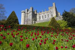 Arundel Castle in West Sussex. ARUNDEL, UK - MAY 5TH 2018: A view of the magnificent Arundel Castle, located in the historic market town of Arundel in West stock photos