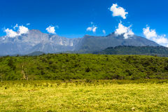 Arusha Nationalpark Royalty Free Stock Photography