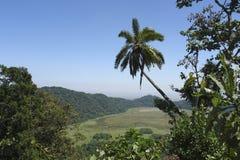 Arusha park narodowy w Afryka Zdjęcia Royalty Free