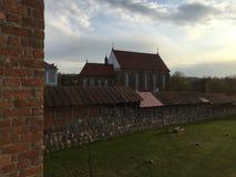 Arv av Litauen Royaltyfri Foto