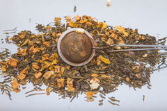 arvense φλυτζανιών equisetum εστίασης naturopathy εκλεκτικό τσάι έγχυσης αλογουρών γυαλιού βοτανικό Στοκ Φωτογραφία