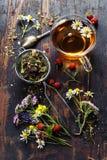 arvense filiżanki equisetum ostrości szklanej ziołowej horsetail infuzi naturopathy selekcyjna herbata zdjęcia royalty free