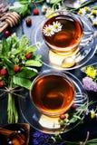 arvense filiżanki equisetum ostrości szklanej ziołowej horsetail infuzi naturopathy selekcyjna herbata obrazy royalty free