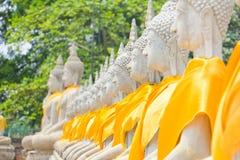 Arvet av Buddhastatystenen på Ayuthaya Thailand royaltyfri foto