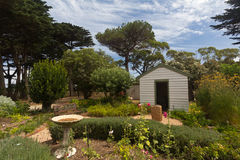 Arvlantgård i Philip Island Royaltyfri Bild